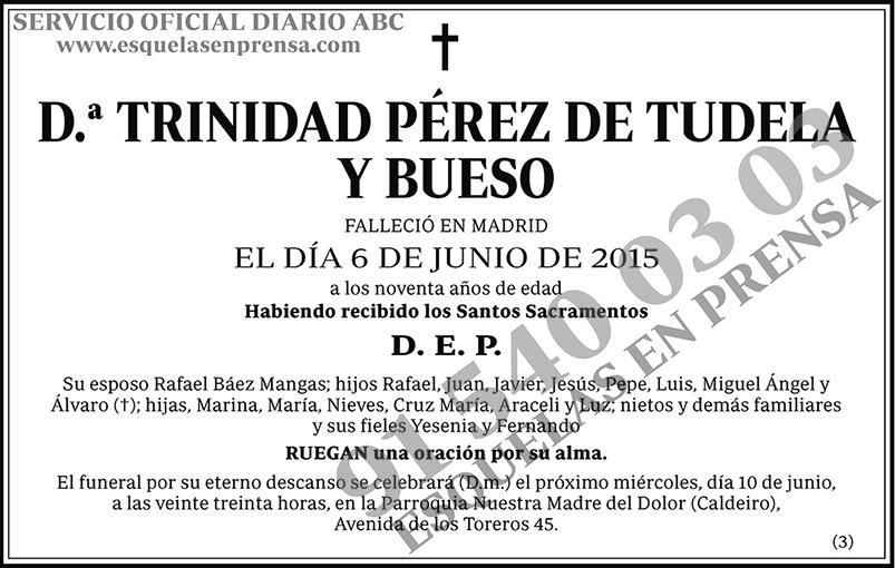 Trinidad Pérez de Tudela y Bueso